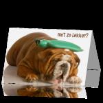 beterschapkaart-hond-niet-zo-lekker